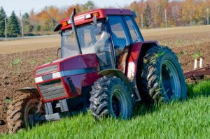 Plowing under a second growth of wheat shoots in autumn in New York State.