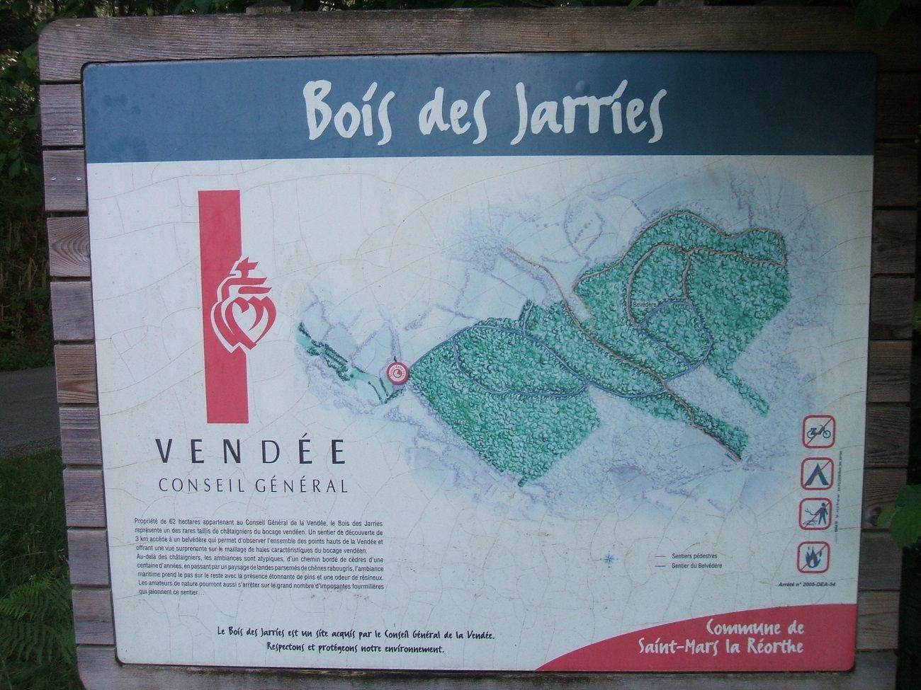 Plan du bois des Jarries